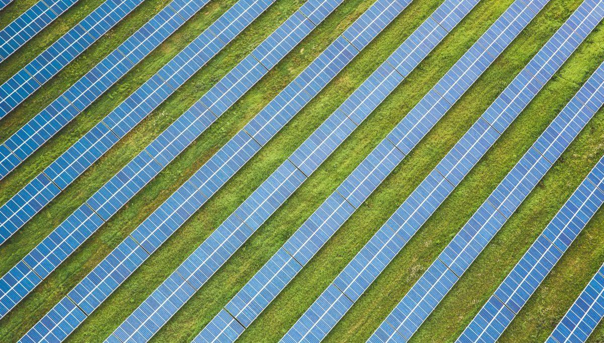 Scenari energetici internazionali: le rinnovabili continuano a vincere e catturano nuovi alleati